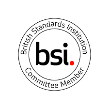 BSI Standards Users Award - Productivity logo